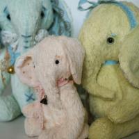 Elephant7