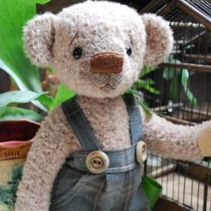 L'ours firmin a été adopté