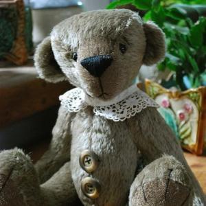L'ours Modeste a été adopté