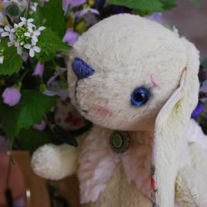 Kit Molly le lapin bélier
