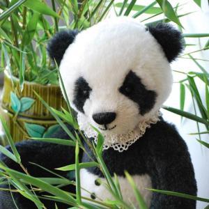 Kit Xiao le panda